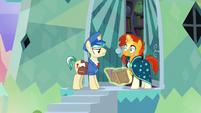Sunburst notices the Mail Pony S8E8
