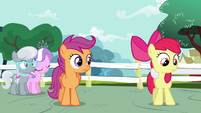 Apple Bloom about to be pulled by Sweetie S4E15