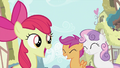 Apple Bloom telling lesson S2E06.png