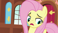 "Fluttershy ""can't build the sanctuary alone"" S7E5.png"