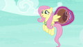 """Fluttershy """"hello there, Mr. Ball"""" S6E18.png"""