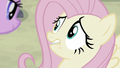 Fluttershy feeling very nervous S5E02.png