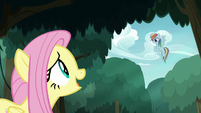 Fluttershy sees fake Rainbow in the sky S8E13