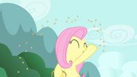 Fluttershy throwing grains S4E14