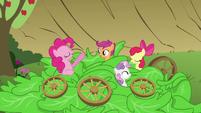 Pinkie Pie 'Veggie salad' S3E04