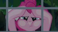 Pinkie Pie looks inside A. K.'s window again S7E18