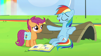 "Rainbow Dash ""I can fall asleep anywhere"" S7E7"