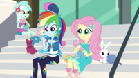 Rainbow Dash knits a small Wondercolt sweater EGDS4