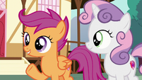"Scootaloo ""might even make us better"" S6E4"