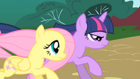 Twilight and Fluttershy chase Philomena S01E22