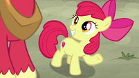 "Apple Bloom ""just like we practiced!"" S7E8"