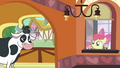 Apple Bloom 'Not her either' S3E4.png