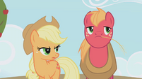 "Applejack ""are you saying"" S01E04"