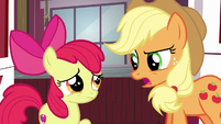 Applejack --the Apples win most traditional-- S6E14