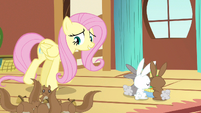 Fluttershy all just cranky S3E13