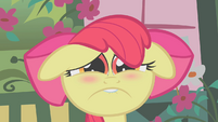 Miserable Apple Bloom S01E12