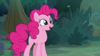 "Pinkie Pie ""like a friendship quiz"" S8E13"