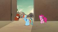 Rainbow Dash and Pinkie Pie watch A. K. run away S7E18