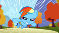 Rainbow Dash launched S1E13.png
