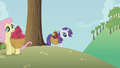 Rarity and Fluttershy gathering apples S1E4.png