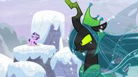 Starlight reappears on a snowy pillar S9E24