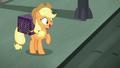 Applejack feeling confident S5E16.png