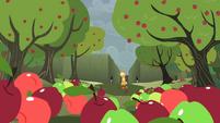 Apples moving towards Applejack S2E01