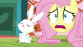 """Fluttershy """"I'll have to go out"""" S5E21.png"""