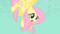 Fluttershy being suspended in the air by a Diamond dog S1E19.png