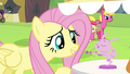 Fluttershy looking at bunny figurine S4E22.png