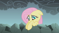 Fluttershy looks down at her friends S1E07