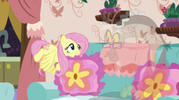 Fluttershy picks up Discord's throw pillow S7E12