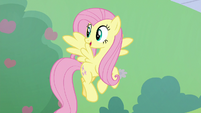 Fluttershy proud of her buckball pass S8E24