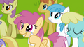 Pegasi moved by Rainbow Dash's words S2E22.png