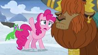 Pinkie Pie -all this snow-!- S7E11