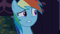 "Rainbow Dash ""this was all a prank?"" S6E15"