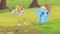 Rainbow Dash contentedly flies away S2E08