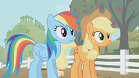 Rainbow and Applejack side by side S1E03