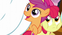 "Scootaloo ""No matter how long it takes!"" S6E4"