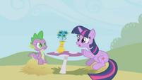 Twilight -I mean about the gala- S1E03