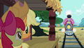Apple Bloom 'Is that the train from Manehattan' S3E4.png