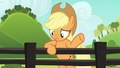 """Applejack """"they got used to it"""" S6E10.png"""