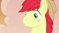 Bright Mac blushing at Pear Butter's love confession S7E13.png