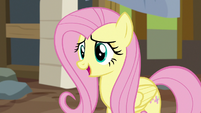 "Fluttershy ""while I appreciate your efforts"" S7E5"