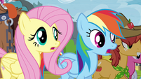 Fluttershy and Rainbow Dash surprised S4E22