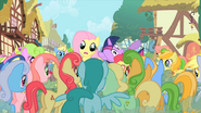 Fluttershy being mobbed