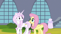 Fluttershy gives instructions to Fleur de Lis S9E13