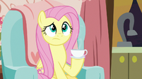 Fluttershy holding a cup of green tea S7E12