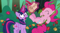 Pinkie Pie accidentally kicks Twilight's scroll S8E13