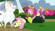 Pinkie Pie gritándole a Fluttershy usando un megáfono T4E10
